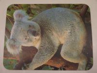 """Podložka pod myš-""""Koala"""" MANHATTAN"""